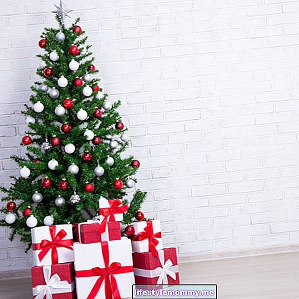 6 unmissable ornaments in a Christmas tree and their meaning - General